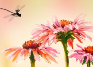 flowers and dragonfly